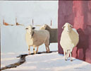 Neighbors, Three Sheep